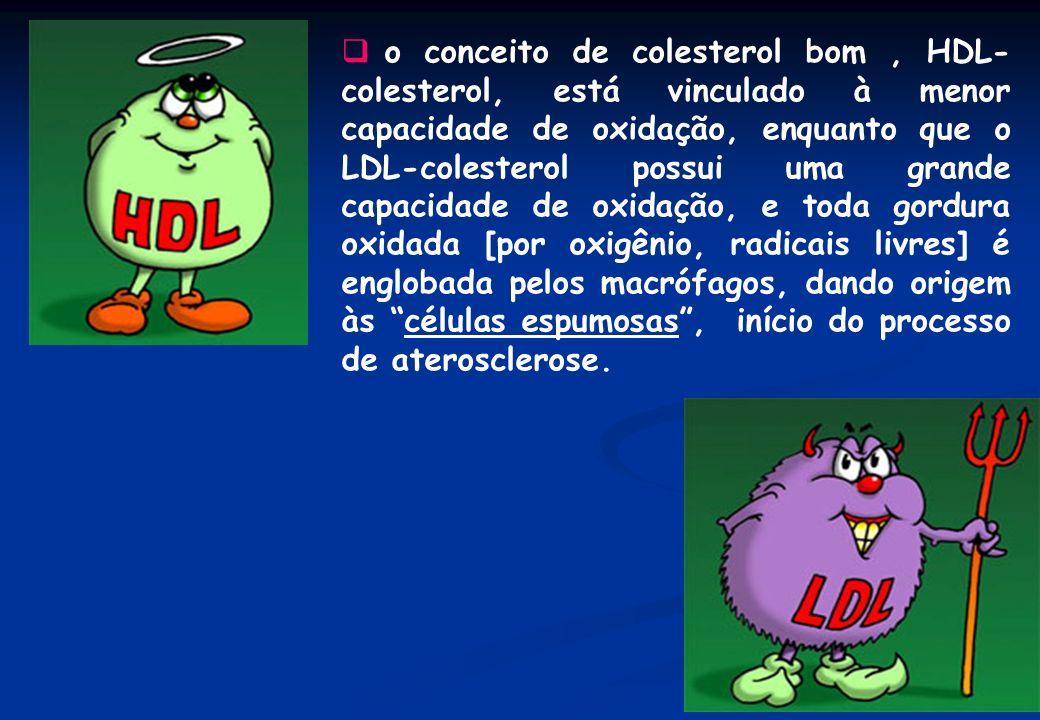 o conceito de colesterol bom , HDL-colesterol, está vinculado à menor capacidade de oxidação, enquanto que o LDL-colesterol possui uma grande capacidade de oxidação, e toda gordura oxidada [por oxigênio, radicais livres] é englobada pelos macrófagos, dando origem às células espumosas , início do processo de aterosclerose.